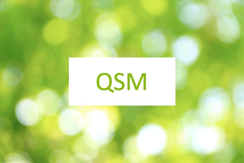 You are currently viewing QSM Vorschläge